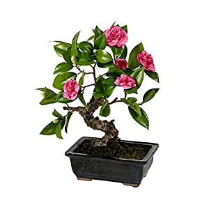 MARJON FlowersCamellia Bonsai Tree Bush Plant Artificial Red Pink Flower Arrangement Ceramic Pot Japanese Oriental 59