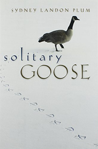 Solitary Goose -