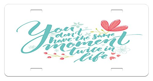 Lunarable Inspirational Quotes License Plate, Inspirational Word Theme Hand Drawn Flowers in Pastel Colors Print, High Gloss Aluminum Novelty Plate, 5.88 L X 11.88 W Inches, Turquoise Pink -