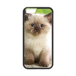 Cute Cat Sit Case for iPhone 6