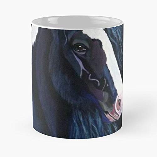 (Horse Portrait Irish Cob Gypsy Vanner - Funny Gifts For Men And Women Gift Coffee Mug Tea Cup White 11 Oz.the Best)