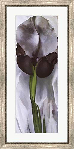 Iris by Georgia O'Keeffe Framed Art Print Wall Picture, Silver Scoop Frame, 20 x 39 ()