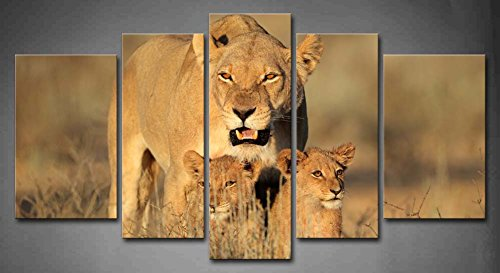 First Wall Art - 5 Panel Wall Art Lioness With Cubs In Early Morning Light Kalahari Desert South Africa Grass Painting Pictures Print On Canvas Animal The Picture For Home Modern Decoration piece (Stretched By Wooden Frame,Ready To Hang) by Firstwallart