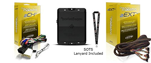 Rockford Fosgate DSR1 8-Channel Interactive Signal Processor w/ Integrated Module & ADS HRN-AR-CH2 T-harness & HRN-AR-EXT4 4-meter extension cable for select vehicles and a SOTS Lanyard