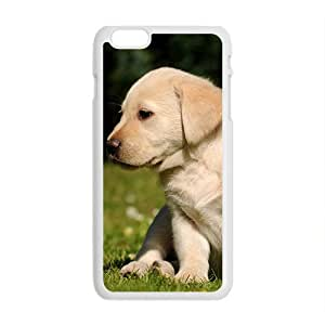 Big Dog And Little Kitten Phone Case for Iphone6 plus