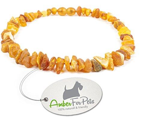 Bernstein Halsband für Hunde - von 20cm bis 68cm - Bernsteinkette - Zeckenhalsband - Zeckenschutz 52cm
