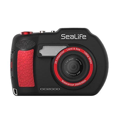 Best Underwater Digital Camera For Scuba Diving - 7