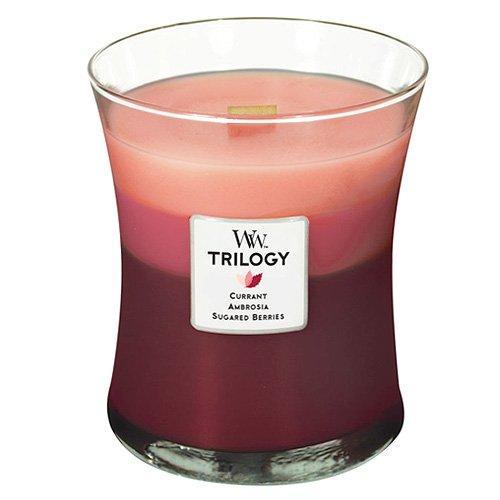 Woodwick Trilogy - Vela aromática Grande en Tarro, Aroma a La tentación de la Fruta Tres Capas, Color Rojo y Rosa Virginia Candle Company 93908