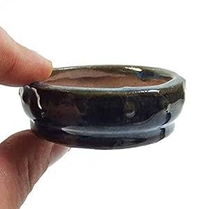 Mini acristalamiento Hachís para Bonsai explicitas, cactus o imprecisión - 20 diseño