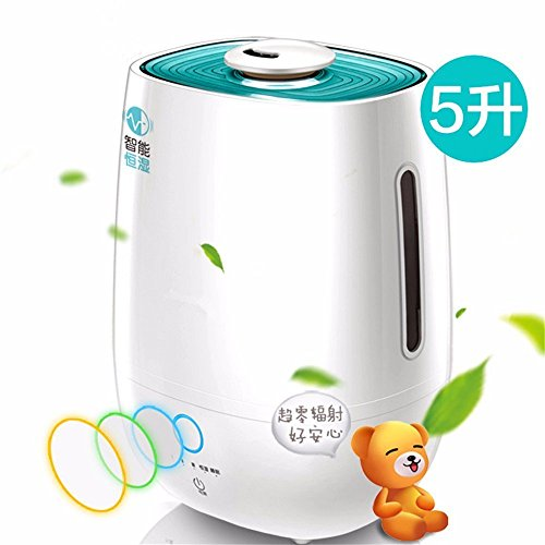 HOMEE Humidifier lights home small mute bedroom air of the islands you visit women creative mini large capacity office aromatherapy machine by HOMEE