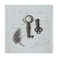 Trademark Fine Art Plume Letters III by Sue Schlabach, 14x14-Inch