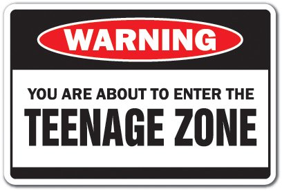 "YOU ARE ABOUT TO ENTER THE TEENAGE ZONE Warning Sign children kids | Indoor/Outdoor | 12"" Tall"