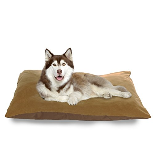 NAP Pet Bed Suede and Oxford Pet Pillow Bed, Camel, 35-Inch
