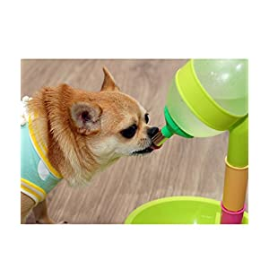 Free-Standing Dog Cat Water Bottle & Bowl: Stable with Enclosed 'Water-Weight Holder', Height-Adjustable