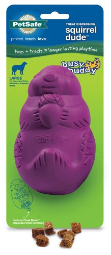 PetSafe Busy Buddy Squirrel Dude Dog Toy, Large