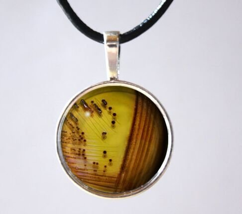 Microbiology Bacteria Necklace Bacterial Culture Agar Plate Medicine Science Germs