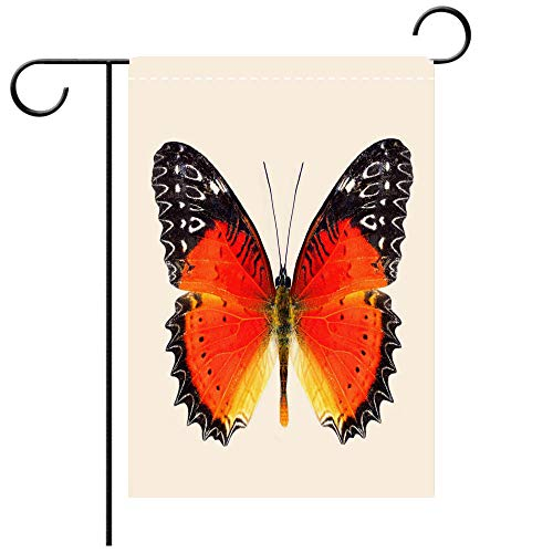 (Garden Flag double-sided printing, Double Sided Beautiful butter Red Lacewing over wings in natural color profile (Cethosia biblis) with super vivid orange Best for Party Yard and Home Outdoor Decor)