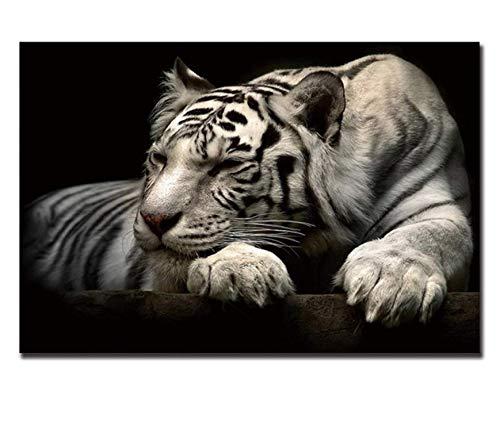descuento de ventas en línea Tworidc5-50x70cm Framed UPUPUPUP Mentira Mentira Mentira Tigre blancoo Arte de la Lona Pintura Animal Poster Vintage Moderno, Tworidc5-50X70Cm Enmarcado  garantizado