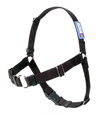 SENSE-ation No-Pull Dog Harness - Black