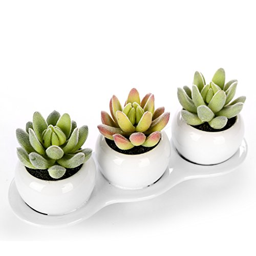 Realistic Artificial Succulent Planters Decorative