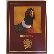 Rooster! Tribute To Pheasant Hunting In North America