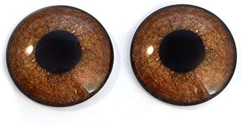 Glass Eyes 8mm Hen Harrier Chicken Bird Realistic Taxidermy Jewelry Art Doll