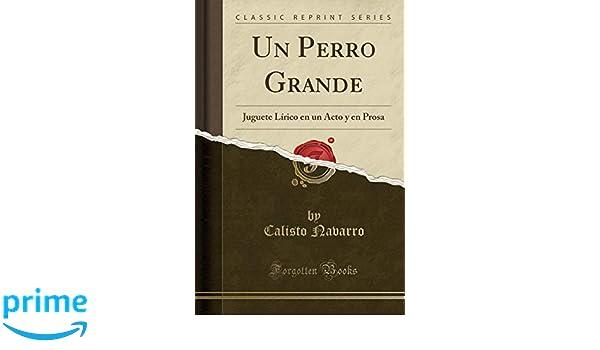 Un Perro Grande: Juguete Lírico En Un Acto Y En Prosa (Classic Reprint) (Spanish Edition): Calisto Navarro: 9781390552980: Amazon.com: Books