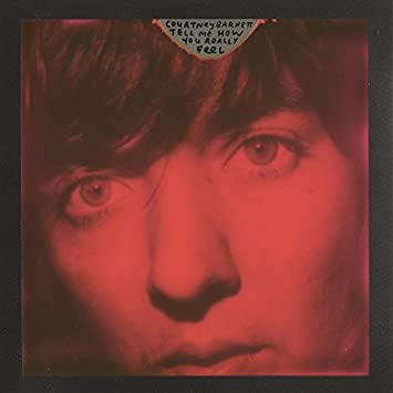Image result for courtney barnett - tell me how you really feel