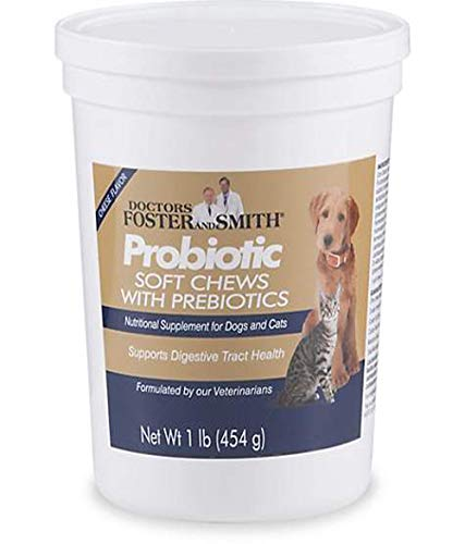 DRS. Foster and Smith Probiotic Soft Chews with Prebiotics for Dogs and Cats, 1 Pound by Drs. Foster & Smith