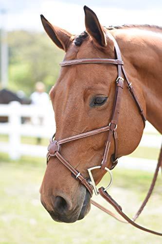 - Huntley Equestrian Sedgwick Figure 8 Noseband (Noseband only) (Full, Conker)