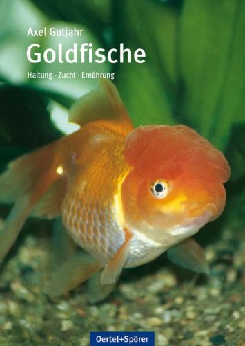 Goldfische: Haltung-Ernährung-Krankheiten