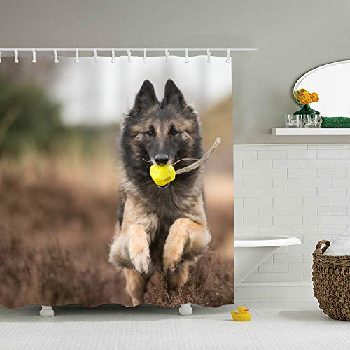 XPNiao Animal Belgian Shepherd Tervuren Dog Shower Curtain, Extra Long Bath Decorations Bathroom Decor Sets with Hooks Marriage Gifts for Men and Women in Art Print Polyester Fabric ()