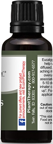 Plant Therapy Eucalyptus (Globulus) Essential Oil. 100% Pure, Undiluted, Therapeutic Grade. 30 mL (1 Ounce).