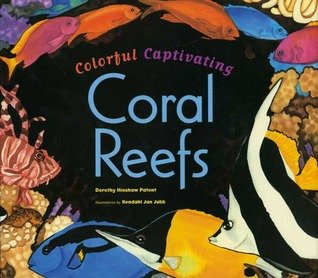 Colorful Captivating Coral Reefs