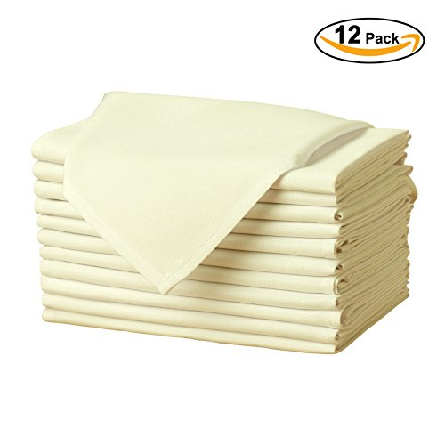 Beige Table Napkins (Remedios Set of 12 Oversized 20x20
