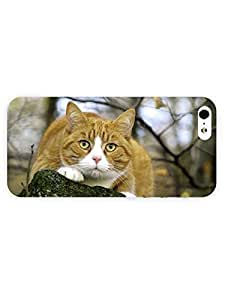 3d Full Wrap Case for iPhone 5/5s Animal Orange Cat61