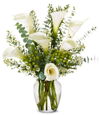 From You Flowers - Sympathy Calla Lilies (Free Vase Included)