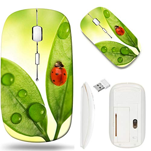 Wireless Mouse 2.4G White Base Travel Wireless Mice with USB Receiver, Noiseless and Silent Click with 1000 DPI for Notebook pc Laptop Computer MacBook Image of Nature Green Ladybug Macro ()
