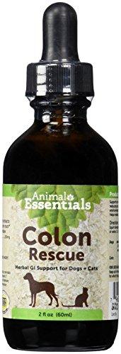 0ANIV Animal Essentials Colon Rescue 2 Fluid Ounces
