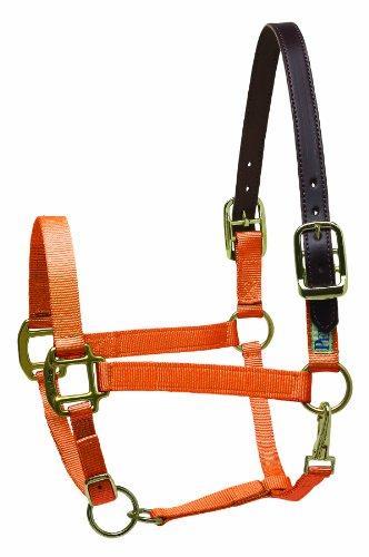 - Perri's Premium Nylon Safety Halter, Pony, Orange