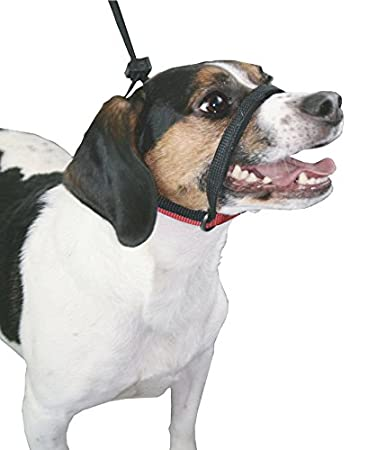 Easy Fit Comfortable Elastic Dog Muzzle Control Non-Pull No-Choke Humane Pet Training Collar Halter with Padded Restraints Dog Pull Control Technology Sporn Dog Head Halter