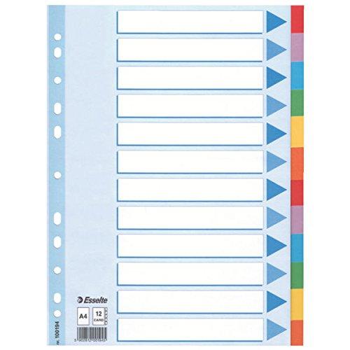 Leitz Kartonregister Standard Blanko, A4, Karton, 12 Blatt, weiss