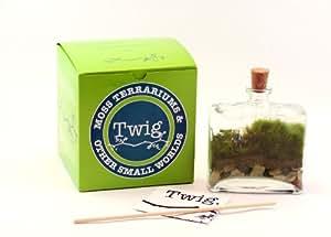 Twig Terrariums Tropisma DIY Terrarium Kit