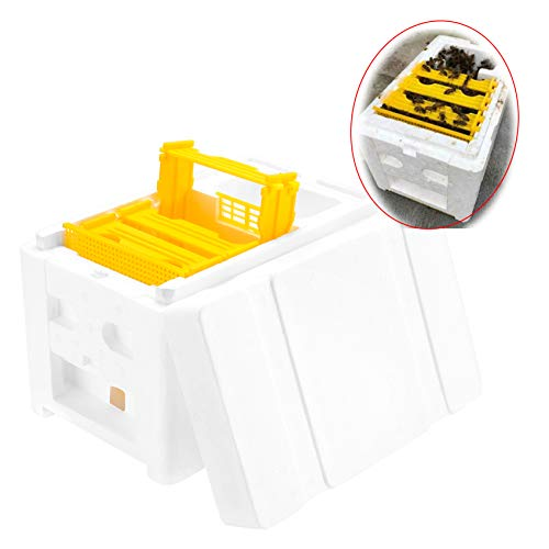 Sunflower 1PCS Beekeeping Queen breeding/Rearing Mini polystyrene mating Nucs hive,DIY Beekeeping (Polystyrene Hive Bee)