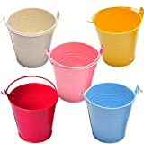 WellieSTR 25PCS (L - 8x10.5x12cm) Small Metal Buckets for Party Favors, Candy, Votive Candles, Trinkets, Small Plants,5 COLOR