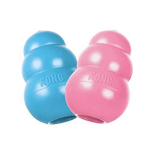 KONG Puppy Kong Toy, Small, Assorted Pink/Blue (Dog Boutique Online)