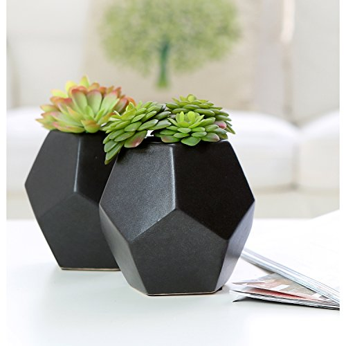 - Set of 2 Realistic Artificial Succulent Plants in Matte Black Modern Geometric Ceramic Pots - MyGift