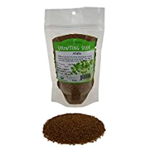 Organic Alfalfa Sprouting Seed- 1/2 Lbs (8 Oz.) - Organic - High Sprout Germination- Edible Seeds, Gardening, Hydroponics, Growing Salad Sprouts, Planting, Food Storage & More