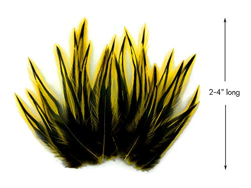 Rooster Feathers, SUNSHINE YELLOW Laced Rooster Cape Feathers - 2 to 4 Inches long - 10 Pieces ()