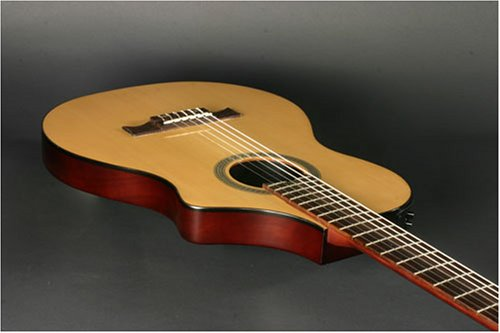Amazon Line 6 Variax 300 Acoustic Guitar Nylon Musical Instruments